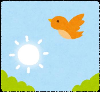 朝・朝日の夢 - 夢占い辞典 - 毎日無料の夢診断