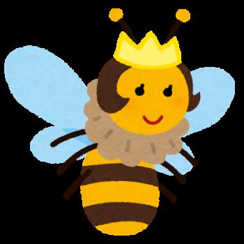 【夢占い】ハチ・ミツバチ(蜂)の夢、女王蜂や蜂に刺されるの本当の意味とは