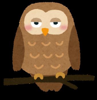 【夢占い辞典】フクロウの夢は理性や知性、そして先を見通す直観力を意味し...あなたの深層心理の意味を解説