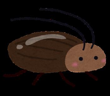 【夢占い】ゴキブリを殺したり、囲まれたり、ゴキブリに追いかけられる本当の夢の意味とは
