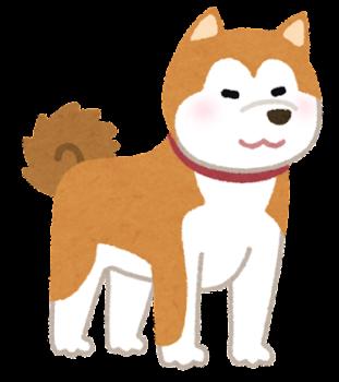 犬の夢 - 夢占い辞典